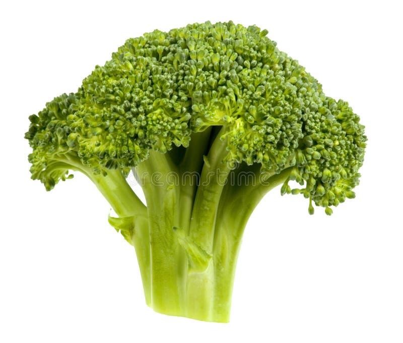 Pista del bróculi imagen de archivo libre de regalías