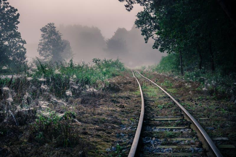 Pista del ferrocarril del indicador estrecho en la región de Lublin imagen de archivo libre de regalías