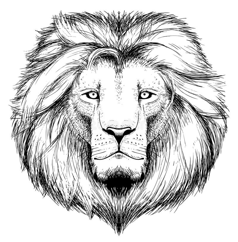 Pista del león ilustración del vector
