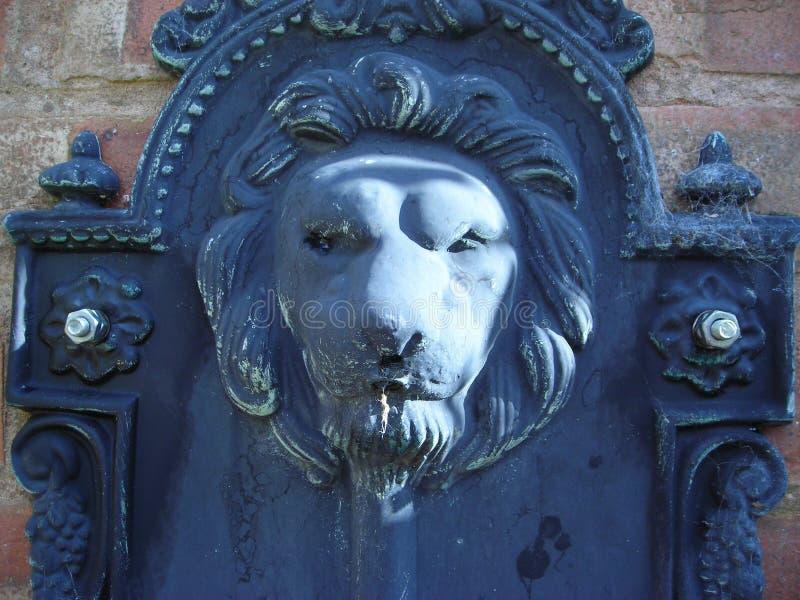 Pista del león fotografía de archivo