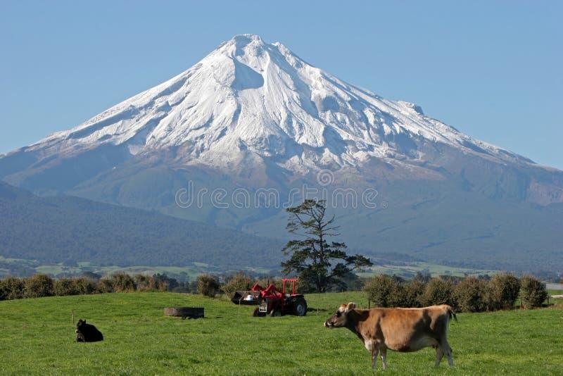 Pista del Mt Taranaki y de granja fotos de archivo libres de regalías