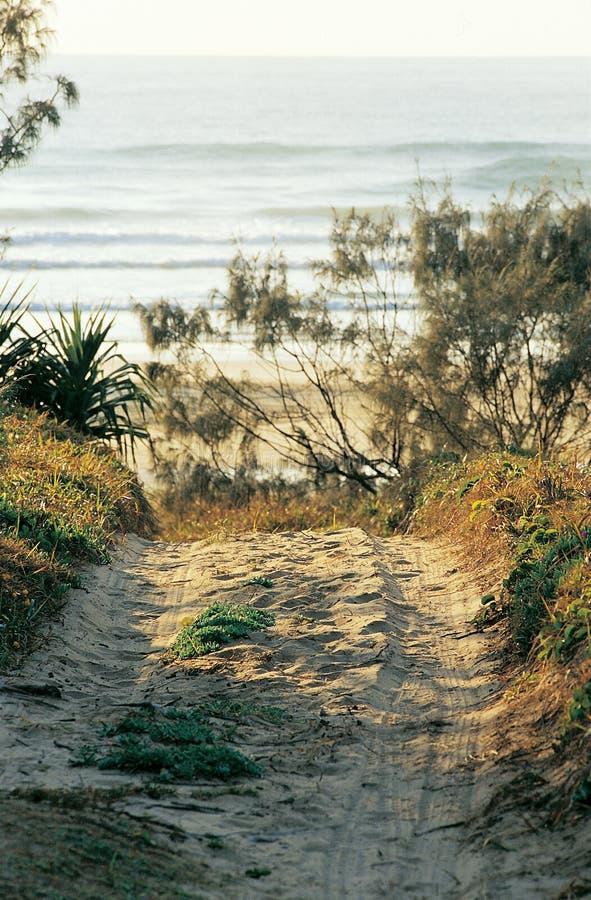 Pista della spiaggia immagini stock libere da diritti