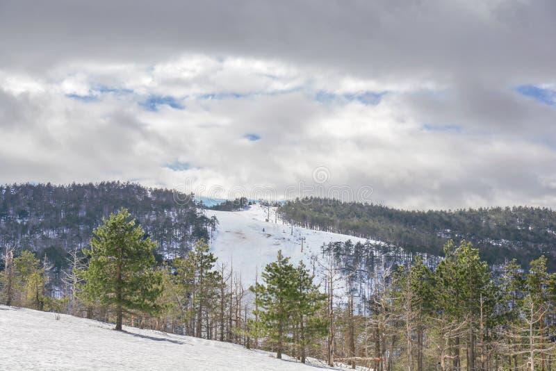 Pista di sci sulla stagione invernale sulla montagna di Divcibare in Serbia con il cielo nuvoloso immagine stock libera da diritti