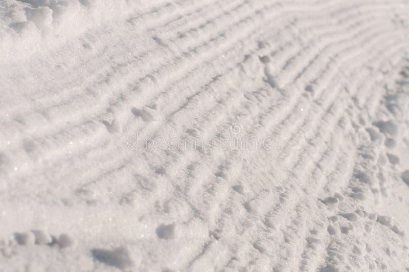 Pista di Snowcats fotografia stock libera da diritti