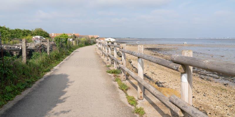 Pista do ciclo na praia no molde da bandeira da Web foto de stock royalty free