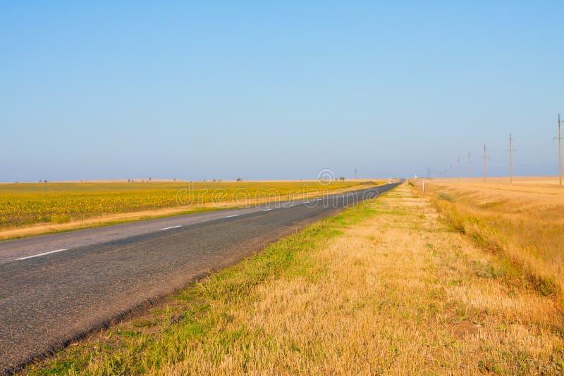 Pista en campos, Samara del camino (Rusia) - Uralsk (   Kazajistán) fotografía de archivo libre de regalías