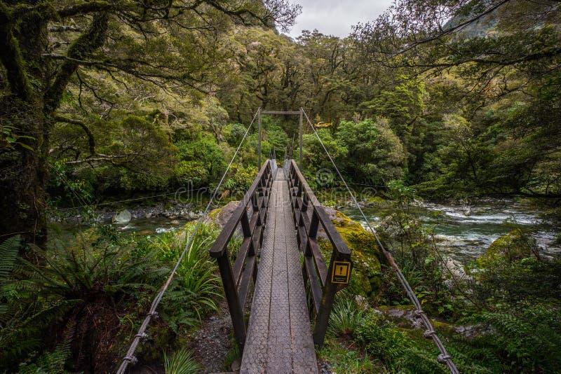 Pista en la caída mariana situada en el parque nacional de Fiordland, Milford Sound, Nueva Zelanda del lago imagen de archivo