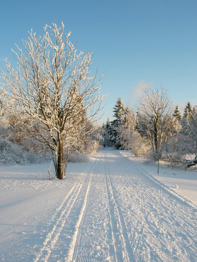 Pista en la nieve imagenes de archivo