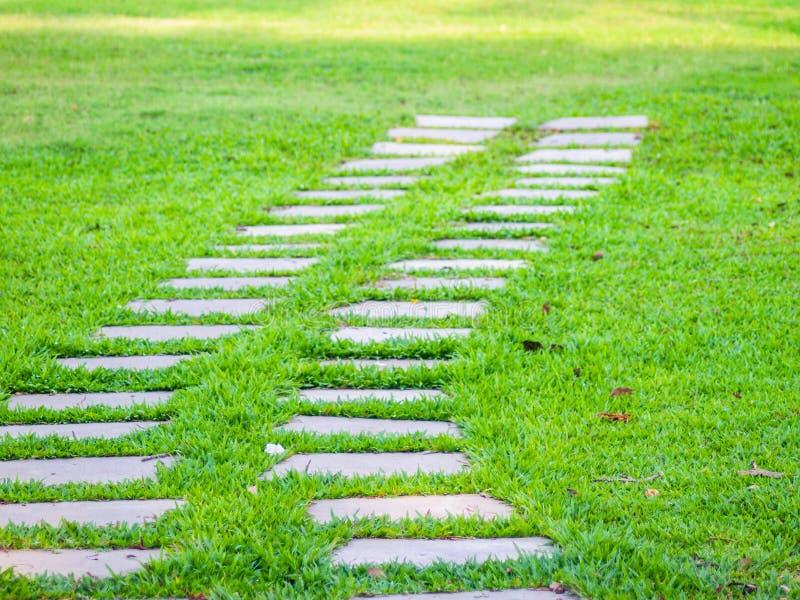 Pista no prado trajeto da passagem na grama Mola do ver?o fundo do conceito do sentido foto de stock royalty free