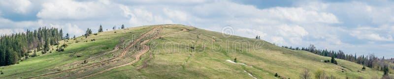 Pista para SUV y ATV en el pico de Cárpatos foto de archivo libre de regalías