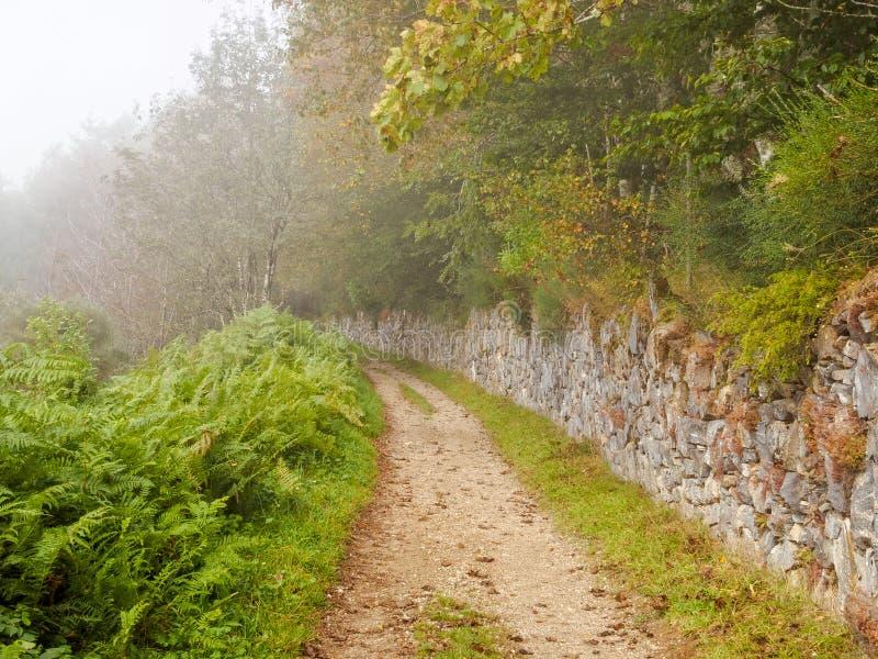 Pista que desaparece en la niebla - O 'Cebreiro de Camino fotografía de archivo libre de regalías