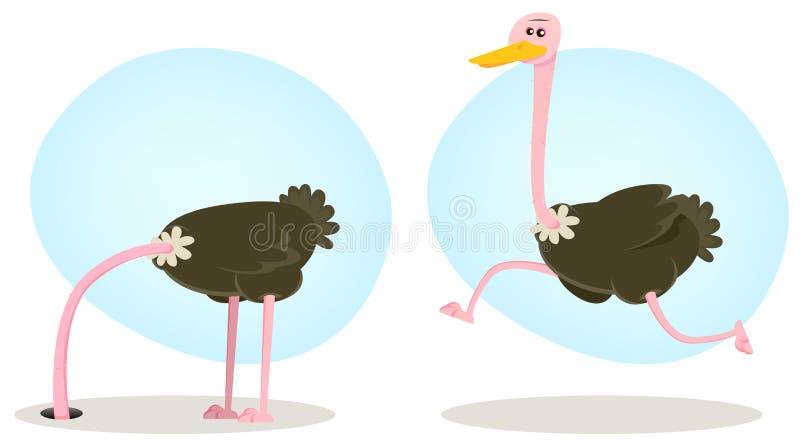 Pista que se ejecuta y de ocultación de la avestruz libre illustration