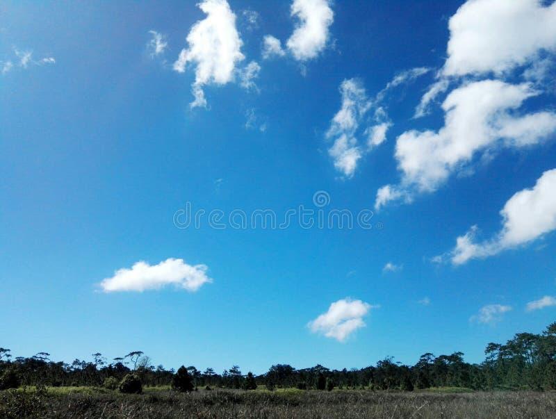 Pista y cielo foto de archivo libre de regalías