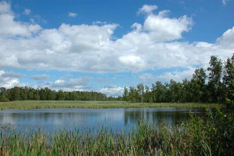 Pista y lago imagen de archivo