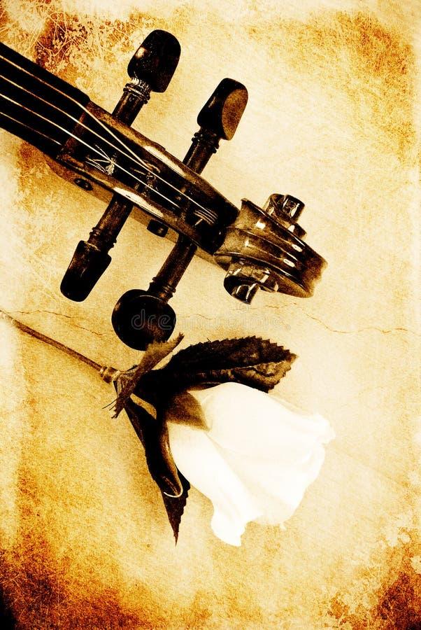 Pista y Rose del violín imágenes de archivo libres de regalías