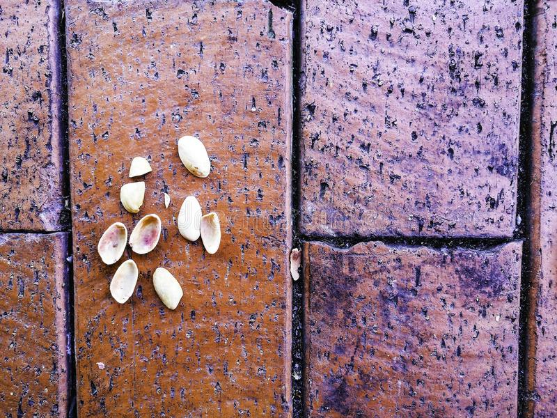 Pistachio shells on the red bricks floor texture. stock images