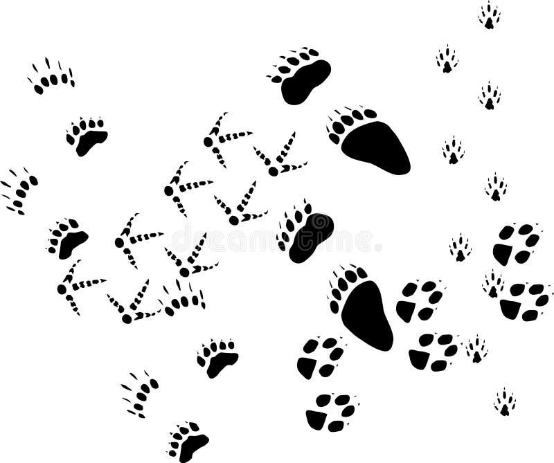 Pistas animales en blanco libre illustration