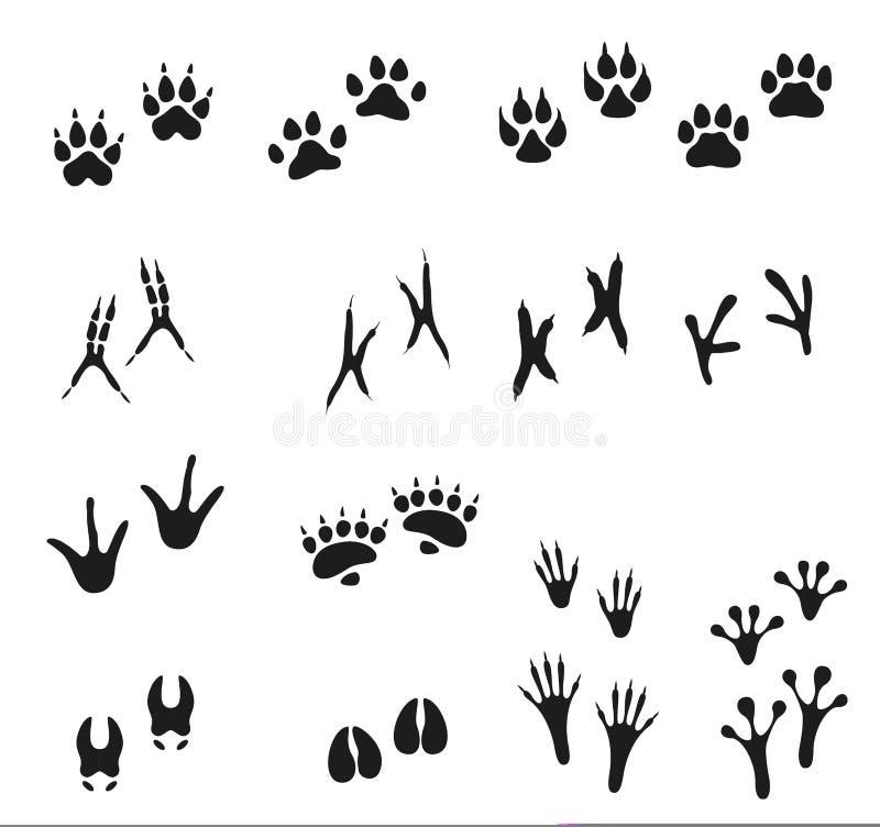 Pistas de animales salvajes y de pájaros Paw Print ilustración del vector