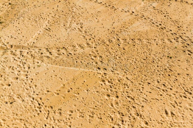 Pistas del animal de Riverbottom fotografía de archivo libre de regalías