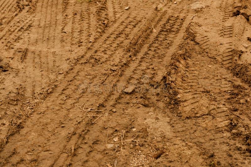 Pistas del neumático del carro en fango foto de archivo