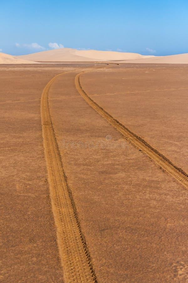 Pistas del neumático a través del desierto imagen de archivo libre de regalías