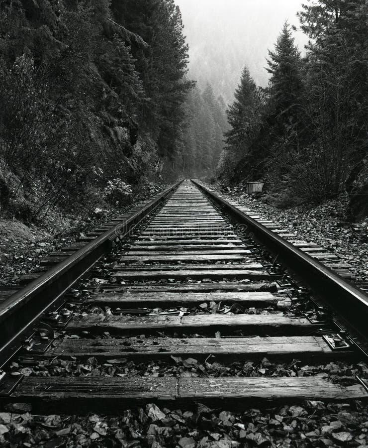 Pistas del norte del tren de Idaho imágenes de archivo libres de regalías