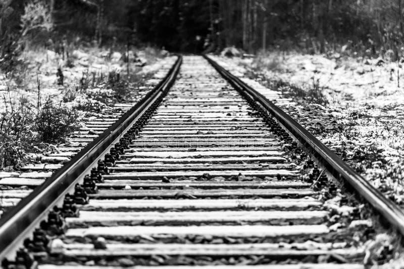 Pistas ferroviarias en blanco y negro Opinión de perspectiva foto de archivo libre de regalías