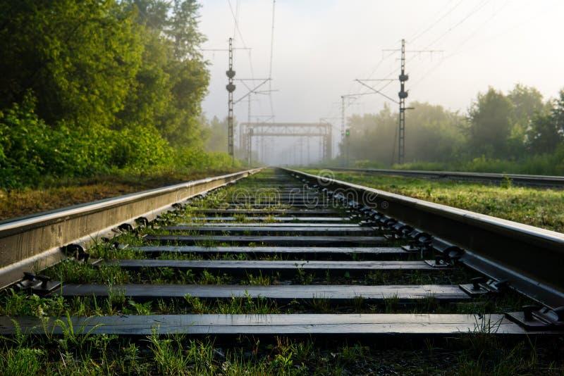 Pistas ferroviarias que entran la niebla imagen de archivo libre de regalías