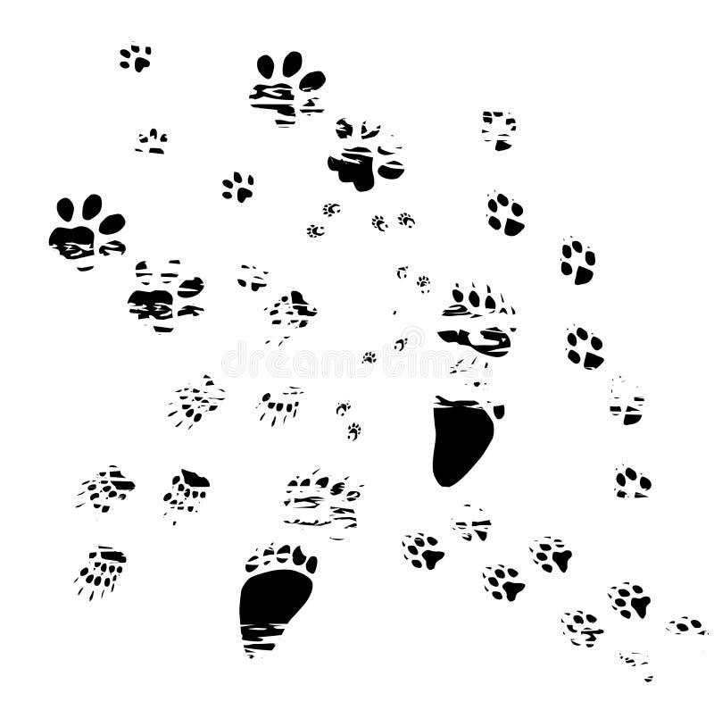 Pistas viejas de los animales ilustración del vector