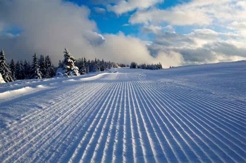 piste准备好的滑雪滑雪者 免版税库存图片