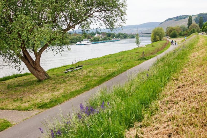 Piste cyclable à la rive de la rivière de la Moselle photographie stock libre de droits