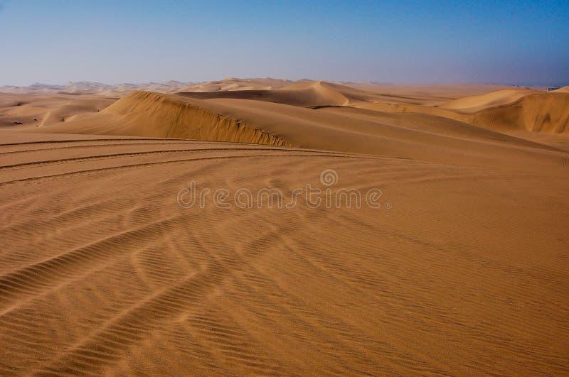 Piste del carrozzino di duna in dune di sabbia del deserto del Kalahari fotografia stock