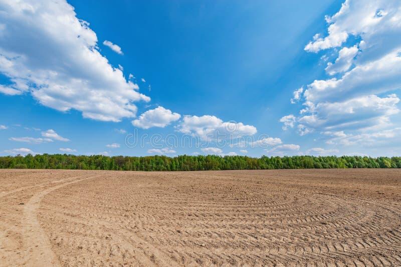 Piste della gomma sul campo asciutto a tempo di giorno fotografia stock libera da diritti