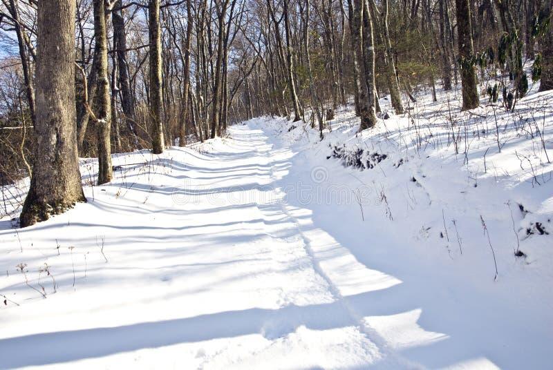 Piste della slitta nella neve immagini stock