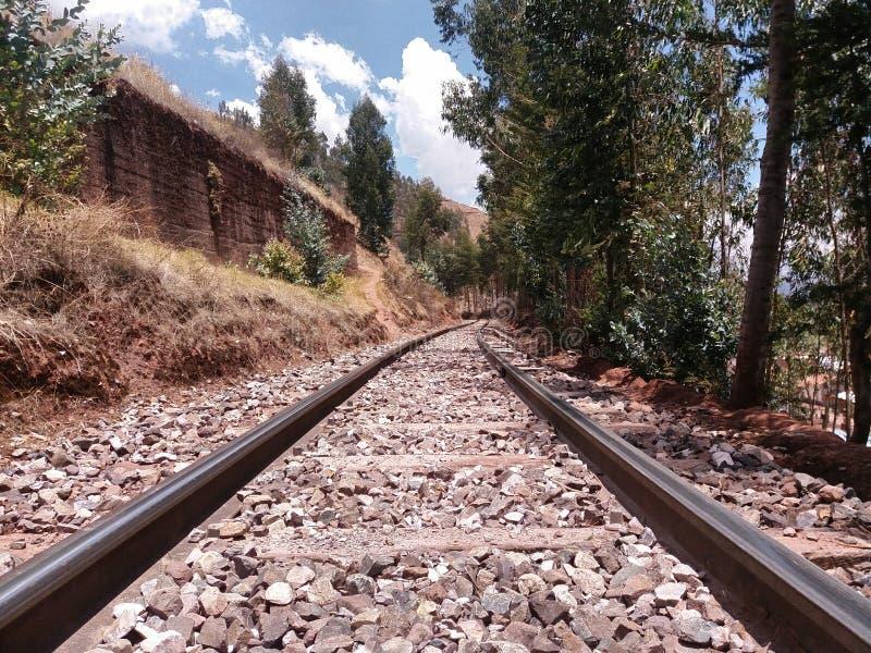 Piste e ghiaia del treno vicino agli alberi immagine stock libera da diritti