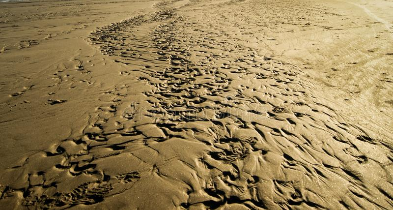 Piste nella sabbia fotografia stock