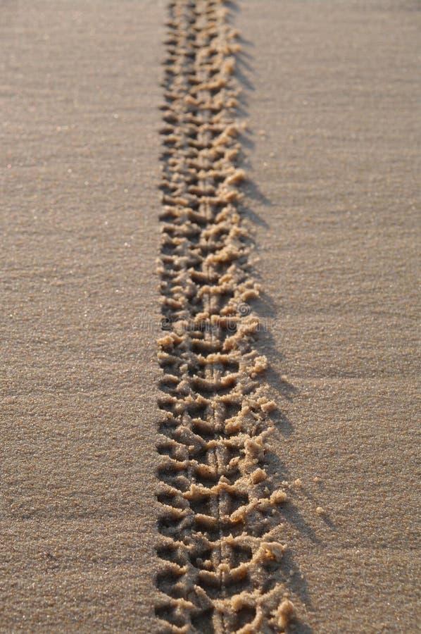 Piste sulla sabbia immagini stock