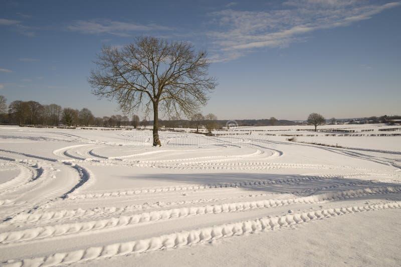 Pistes dans l'horizontal neigeux photo stock