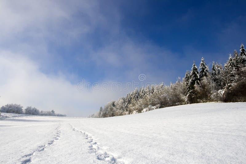 pistes fraîches de neige images stock