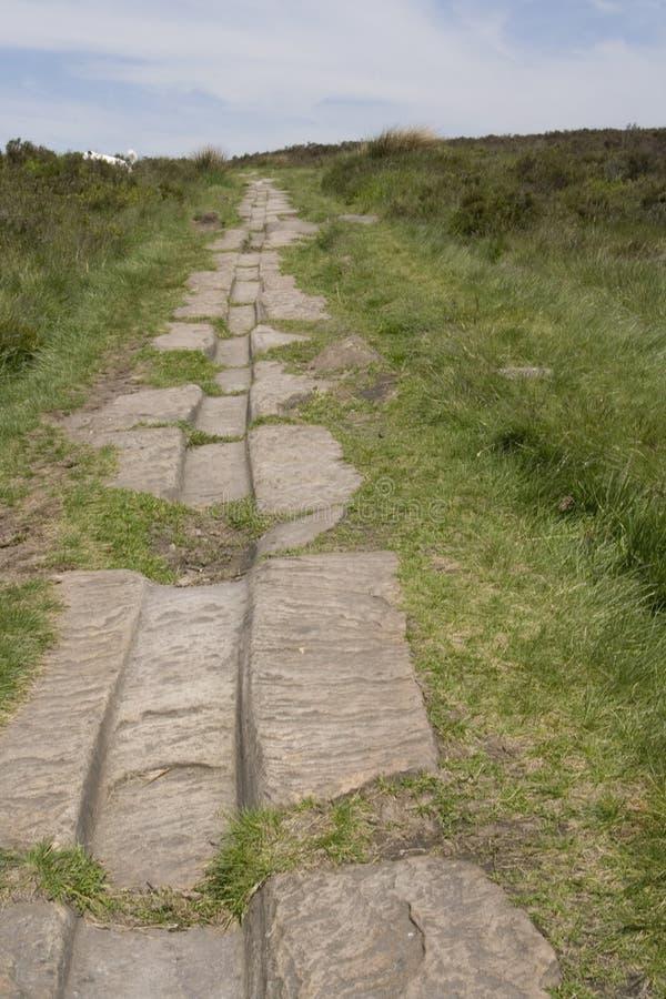 Pistes romaines antiques de route et de chariot photo stock