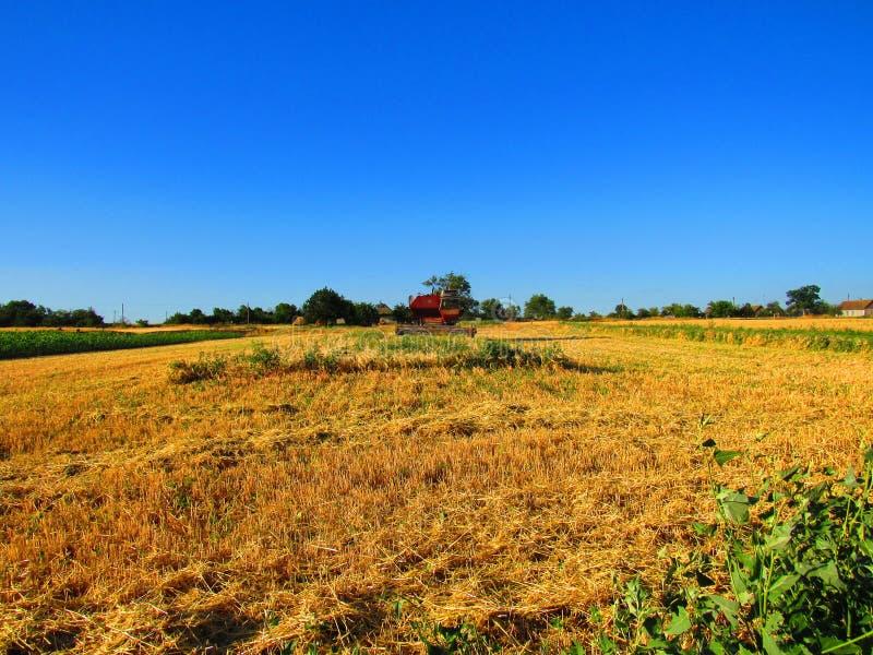 Pistes voor landbouw royalty-vrije stock foto
