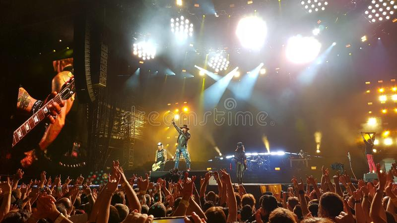 Pistoletów i róż koncert zdjęcie stock