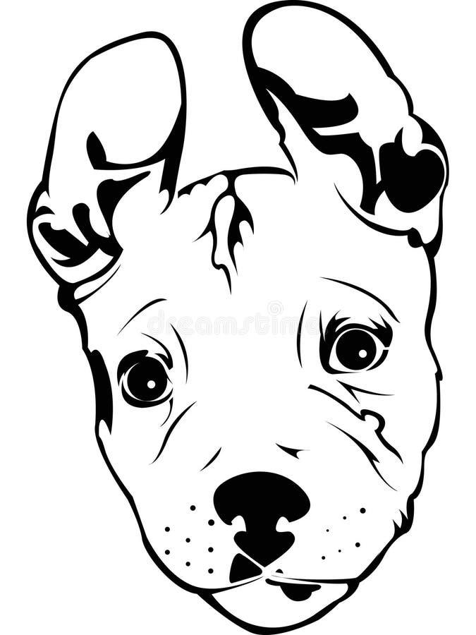Pit Bull Puppy Stock Vector Illustration Of Animals