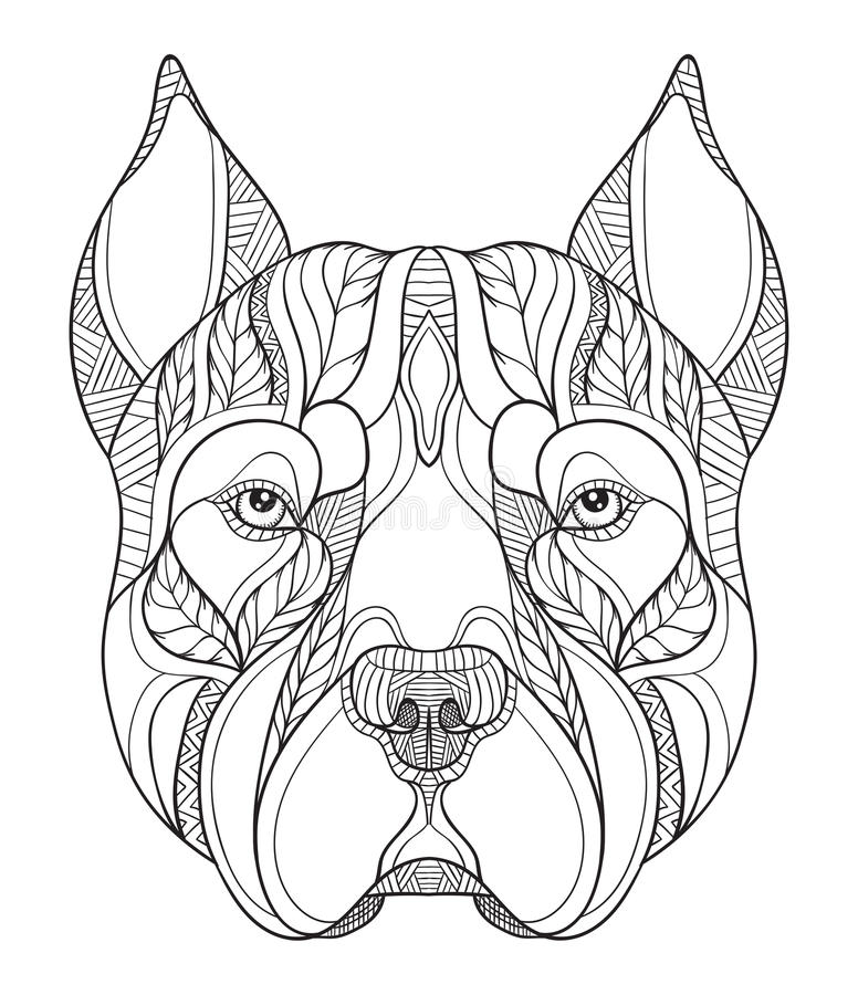 Pit bull terrier head zentangle, doodle stylized, vector, illustration, freehand pencil, hand drawn, pattern. Zen art. Ornate. Pit bull terrier head zentangle stock illustration