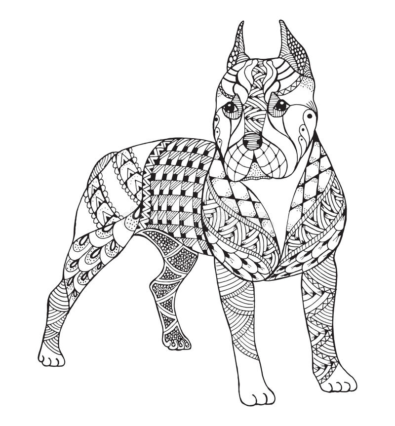 Pit bull terrier zentangle stylized, vector, illustration, freehand pencil, hand drawn, pattern. Zen art. Ornate vector. Lace. Print for coloring books and t vector illustration