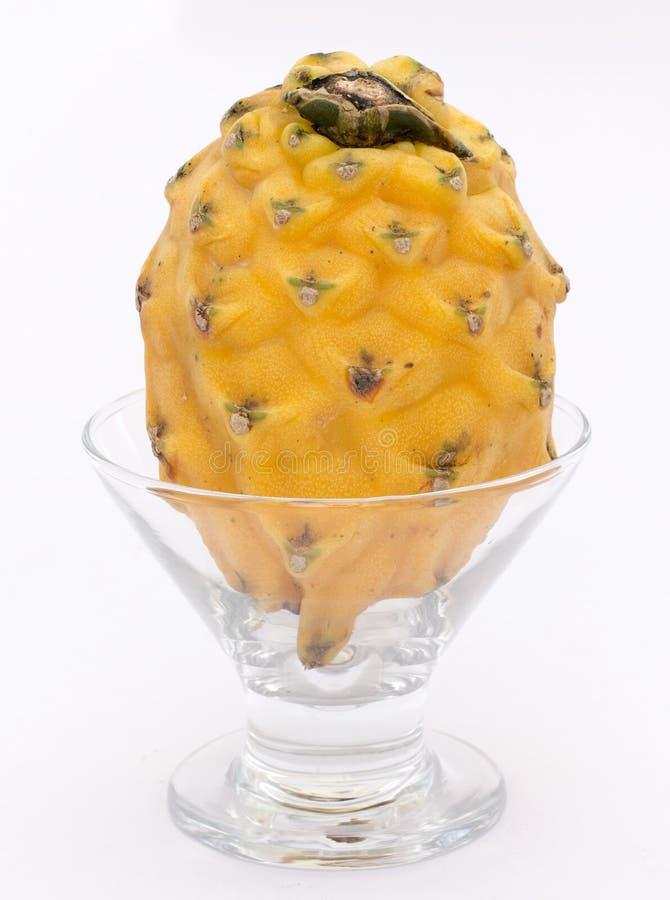 Pitahaya amarelo (megalanthus do Selenicereus), Pitaya ou Dragon Fruit Peru recolhido imagem fotos de stock