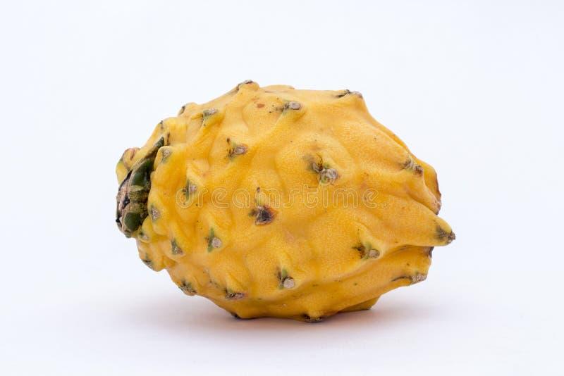 Pitahaya giallo (megalanthus del Selenicereus), Pitaya o Dragon Fruit Il Perù contenuto immagine immagini stock