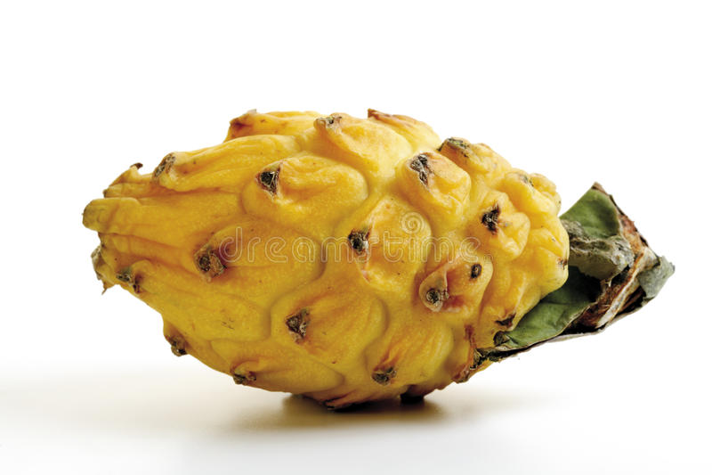 Pitahaya giallo, primo piano immagine stock libera da diritti