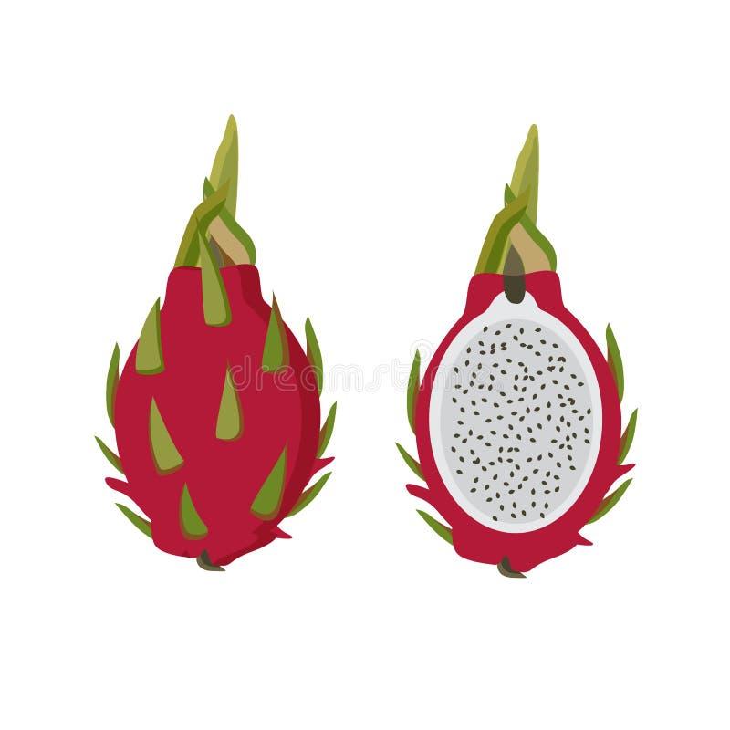 Pitahaya, smok owoc, wektorowa ilustracja Tropikalny Azjatycki jedzenie Heathy jedzenie ilustracji