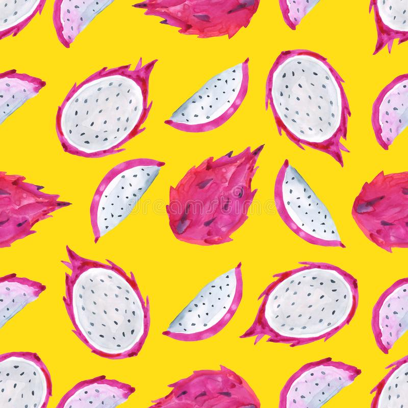 Pitaya Τροπικό σχέδιο των εξωτικών φρούτων άνευ ραφής watercolor ανασκόπησης ελεύθερη απεικόνιση δικαιώματος